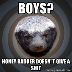 Fearless Honeybadger - Boys? Honey badger doesn''t give a shit