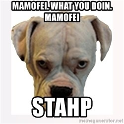 stahp guise - Mamofei. What you doin.      mamofei stahp