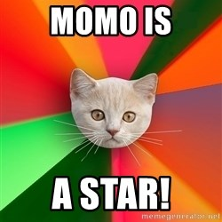 Advice Cat - Momo is a star!