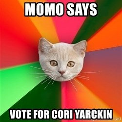 Advice Cat - momo says vote for cori yarckin