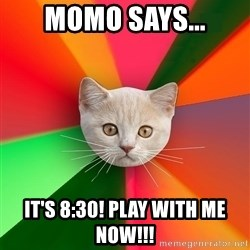 Advice Cat - momo says... it's 8:30! play with me now!!!