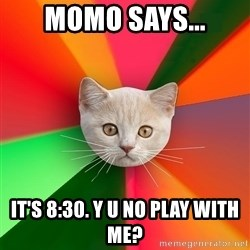 Advice Cat - Momo says... it's 8:30. y u no play with me?