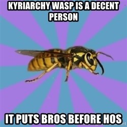 kyriarchy wasp - kyriarchy wasp is a decent person it puts bros before hos