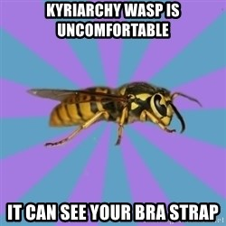 kyriarchy wasp - kyriarchy wasp is uncomfortable it can see your bra strap