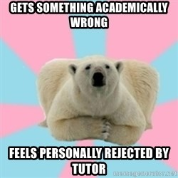 Perfection Polar Bear - gets something academically wrong feels personally rejected by tutor