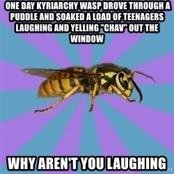 """kyriarchy wasp -  one day kyriarchy wasp drove through a puddle and soaked a load of teenagers laughing and yelling """"CHAV"""" out the window why aren't you laughing"""
