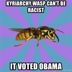 kyriarchy wasp - kyriarchy wasp can't be racist it voted obama