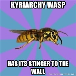 kyriarchy wasp - kyriarchy wasp has its stinger to the wall