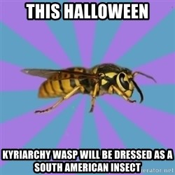 kyriarchy wasp - this halloween kyriarchy wasp will be dressed as a South American insect