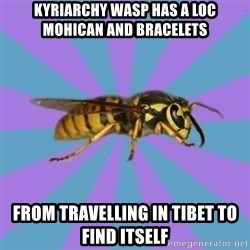 kyriarchy wasp - kyriarchy wasp has a loc mohican and bracelets from travelling in Tibet to find itself