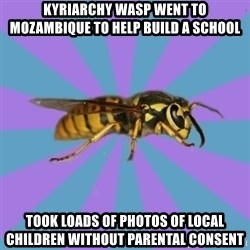 kyriarchy wasp - kyriarchy wasp went to Mozambique to help build a school took loads of photos of local children without parental consent