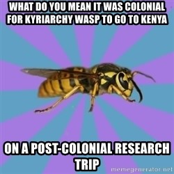 kyriarchy wasp - what do you mean it was colonial for kyriarchy wasp to go to Kenya  on a post-colonial research trip