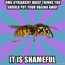 kyriarchy wasp -  omg kyriarchy wasp thinks you should put your vagina away it is shameful
