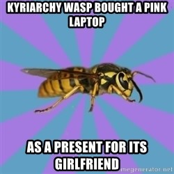 kyriarchy wasp - kyriarchy wasp bought a pink laptop as a present for its girlfriend