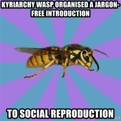 kyriarchy wasp - kyriarchy wasp organised a jargon-free introduction TO SOCIAL REPRODUCTION