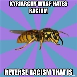 kyriarchy wasp - kyriarchy wasp hates racism reverse racism that is