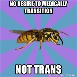 kyriarchy wasp - no desire to medically transition not trans