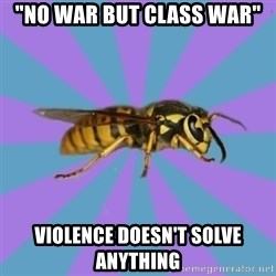 "kyriarchy wasp - ""no war but class war"" violence doesn't solve anything"