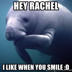 fat positive manatee - Hey Rachel I like when you smile :D
