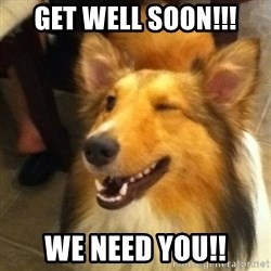 Wink Dog - Get well soon!!! We need you!!