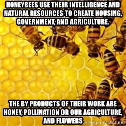 Honeybees - Honeybees use their intelligence and natural resources to create housing, GOVERNMENT, AND AGRICULTURE. The by products of their work are honey, pollination or our agriculture, and flowers