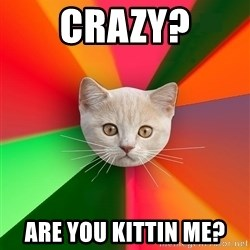 Advice Cat - CRAZY? ARE YOU KITTIN ME?