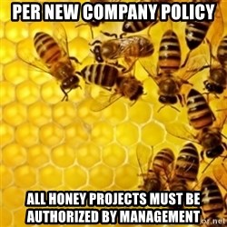 Honeybees - per new company policy all honey projects must be authorized by management