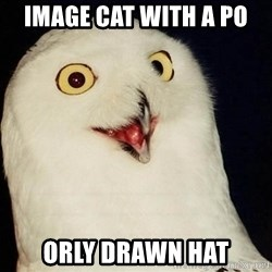 Orly Owl - image cat with a po orly drawn hat