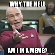 Picard Wtf - Why the hell am i in a meme?