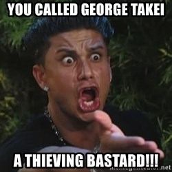 Pauly D - you called george takei  a thieving bastard!!!
