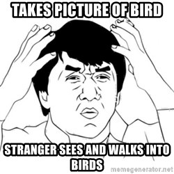 Jackie Chan face - Takes picture of bird stranger sees and walks into birds