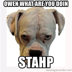 stahp guise - Owen what are you doin stahp