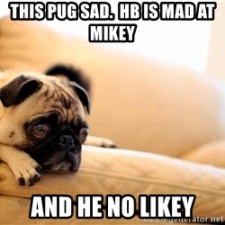 Sorrowful Pug - This pug sad.  HB is mad at Mikey and he no likey