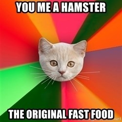 Advice Cat - you me a hamster the original fast food