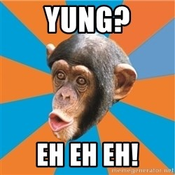 Stupid Monkey - YUNG? EH EH EH!