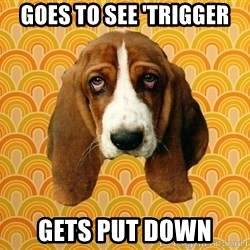 SAD DOG - goes to see 'trigger gets put down