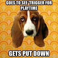 SAD DOG - goes to see 'trigger for playtime gets put down