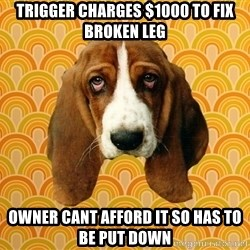 SAD DOG - trigger charges $1000 to fix broken leg owner cant afford it so has to be put down