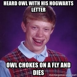 Bad Luck Brian - Heard owl with his hogwarts letter Owl chokes on a fly and dies