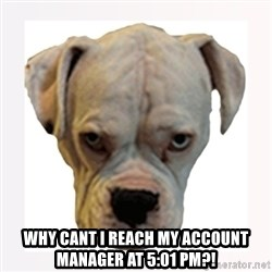 stahp guise -  WHY CANT I REACH MY ACCOUNT MANAGER AT 5:01 PM?!
