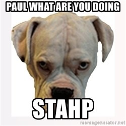 stahp guise - PAUL What are you doing STAHP