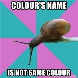 Synesthete Snail - Colour's name  is not same colour