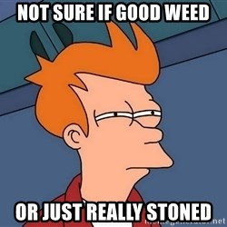 Futurama Fry - not sure if good weed or just really stoned