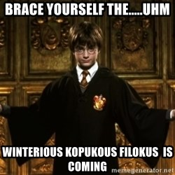 Harry Potter Come At Me Bro - Brace yourself the.....uhm winterious kopukous filokus  is coming