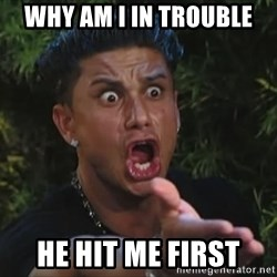 Pauly D - WHY AM I IN TROUBLe HE HIT ME FIRST