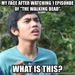 """Confused face - My face after watching 1 episonde of """"the Walking dead"""" What is this?"""