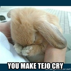 Bunny cry - you make tejo cry