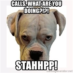 stahp guise - CALLS, WHAT ARE YOU DOING?!?! STAHHPP!