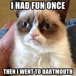 Grumpy Face Cat - I Had fun once then i went to dartmouth