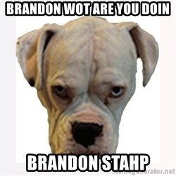 stahp guise - BRandon wOT ARE YOU DOIN BRANDON STAHP